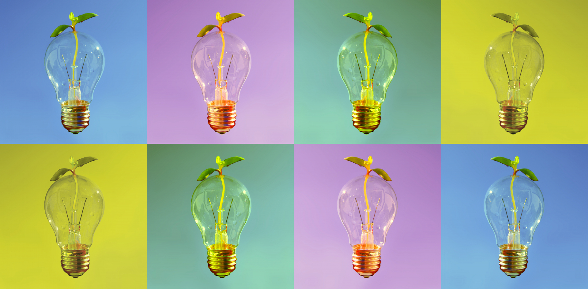 30943531-colorful-lightbulbs-in-rows-as-design-object-for-web.jpg