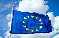1810038-eu-flaggan-2.jpg